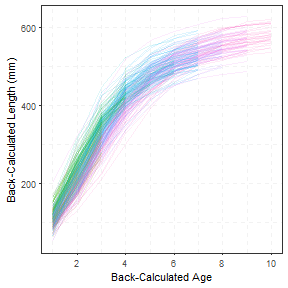 Plots of Back-Calculated Lengths-At-Age I
